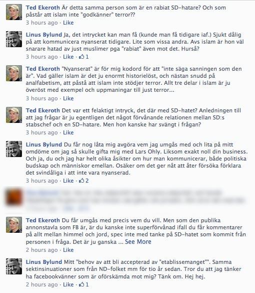 Här råder det delade meningar om den snygga tjejen. Bild: Faksimil från Facebook