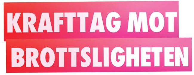 Bild ur Sverigedemokraternas kampanj som blev stoppad. Foto: www.sverigedemokraterna.se