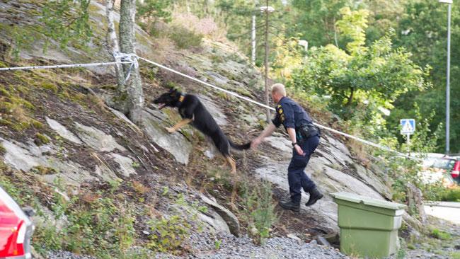 Polisen sökte med hundar i området. Foto: Sven Pernils / Nyheter Idag