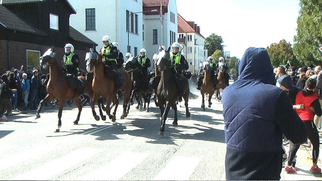 Polishästar deltog i polisens insats i Malmö Foto: Fritz Schibli / TOPNEWS.se