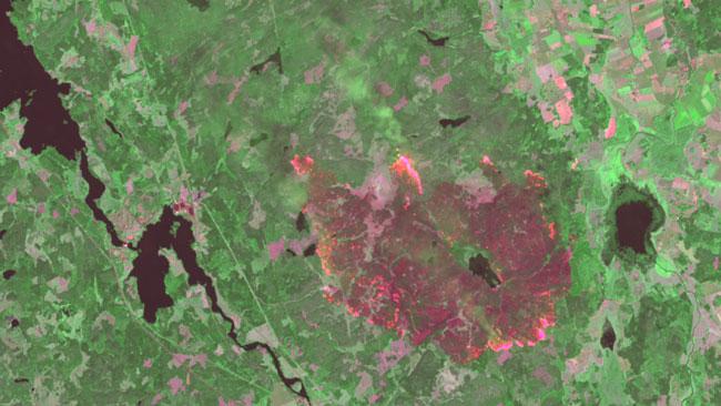 I kanterna av området brinner det öppet på flera ställen. Foto: Landsat 8, NASA/USGS. Bearbetning Metria.