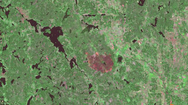 Det röda området visar var det brinner. Foto: Landsat 8, NASA/USGS. Bearbetning Metria.