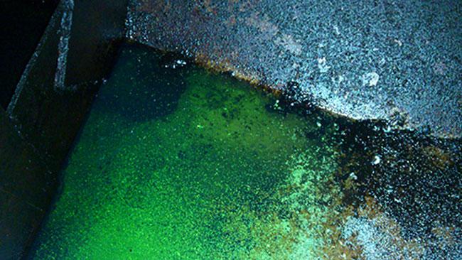 Bilden inifrån dieseltanken som startade misstankar om skattereducerad grönfärgad diesel på forumet Flashback. Foto: www.jenskiil.se