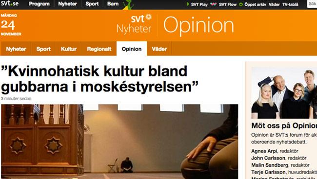Det var allvarliga anklagelser i debattartikeln hos SVT Opinion. Foto: Faksimil SVT.se