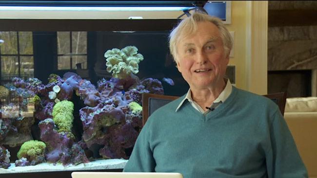 Dawkins vet hur man hanterar näthat. Foto: Faksimil Youtube