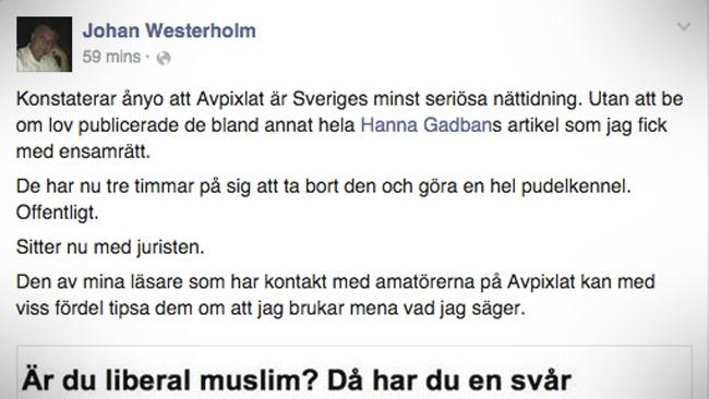 Johan Westerholm är inte glad på sajten Avpixlat. Foto: Faksimil Facebook