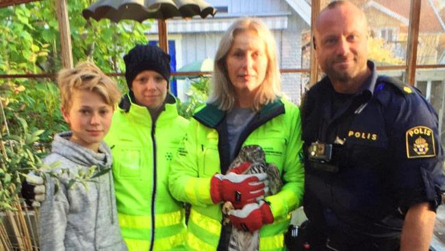 Åsa Sindeman och Agge Sjöbom tillsammans med duvhöken och en glad polisman. Foto: Privat