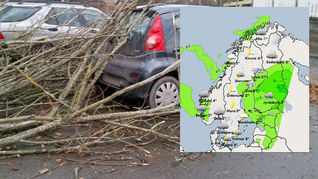 Här har ett träd fallit över en bil. Inklippt i bild SMHIs väderkarta på fredagkvällen.