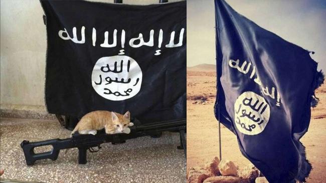 Inget konstigt med de här bilderna, enligt talespersonen för Gävle moské.