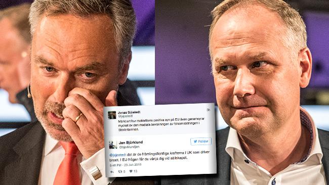 Känslorna går varma på Twitter inför den brittiska omröstningen om EU-medlemsskap. Foto: Nyheter Idag / Twitter