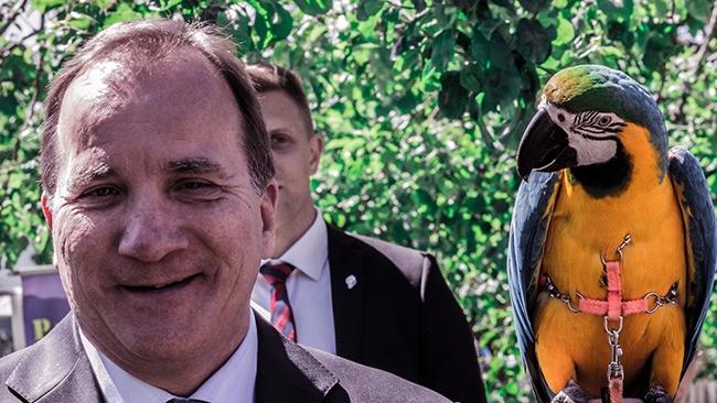 Kappvändarna: 7 politiker och opinionsbildare som bytte åsikt i flyktingfrågan