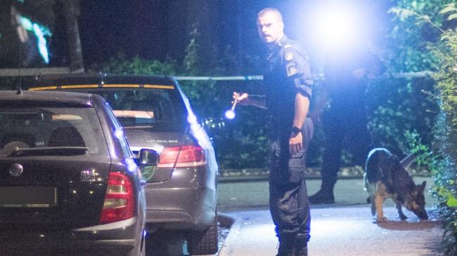 Enligt ögonvittnet sköts mannen vid samma plats där polisen står och  lyser med ficklampa. Foto: Nyheter Idag