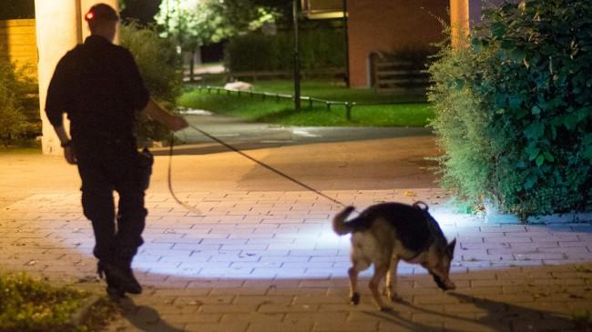 Polisen sökte av området med hund. Foto: Nyheter Idag
