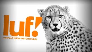 """LUF: """"Sexuellt umgänge med djur ska vara tillåtet"""" - Vill inte prata om det"""
