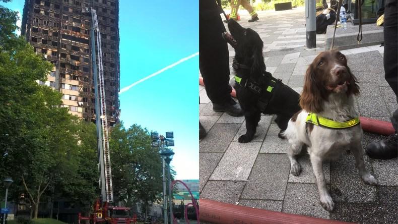Foto: Polisen/brandkåren i London