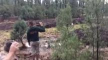Minst nio döda i störtflod i Arizona
