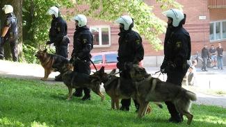 Falska poliser försökte lura till sig polishund