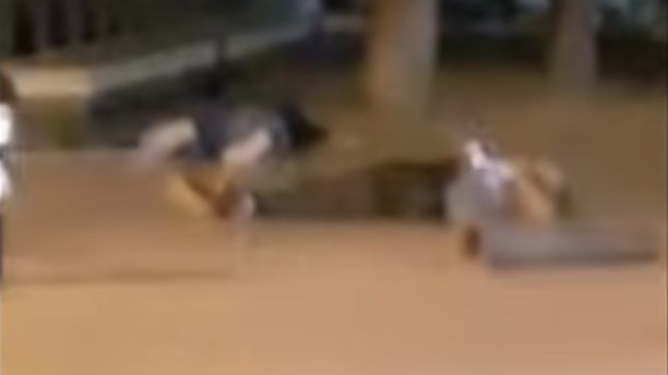 Video: Här skjuter polisen ihjäl fem islamister efter ytterligare ett terrordåd i Spanien