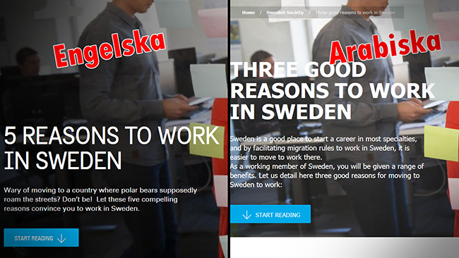 På engelska handlar det om isbjörnar, på arabiska om bidrag. Faksimil sweden.se. Montage: Nyheter Idag