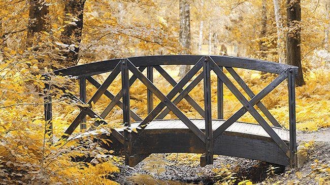 Bro i Boulognerskogen. Bilden är bearbetad. Foto: Anders Gustavson