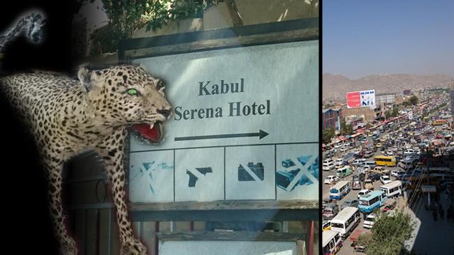 Den uppstoppade leoparden och skylten utanför hotellet i Kabul.