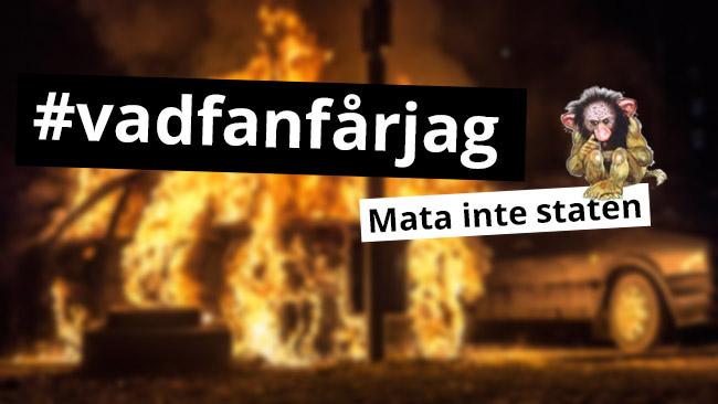 vadfanfarjag_650