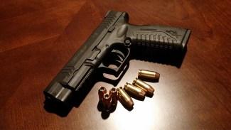 Tullverket varnar - 3D vapen kan användas vid terrorbrott