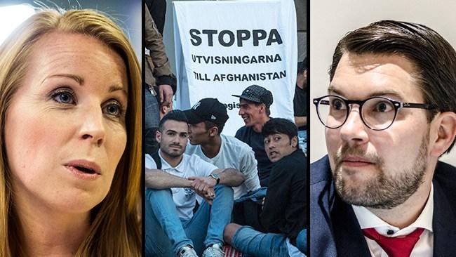 """""""Obefintlig trovärdighet"""": SD dödförklarar Alliansen efter Centerpartiets afghanamnesti"""