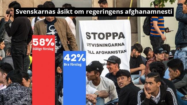 Sex av tio svenskar emot afghanamnestin – Så svarar partiernas väljare