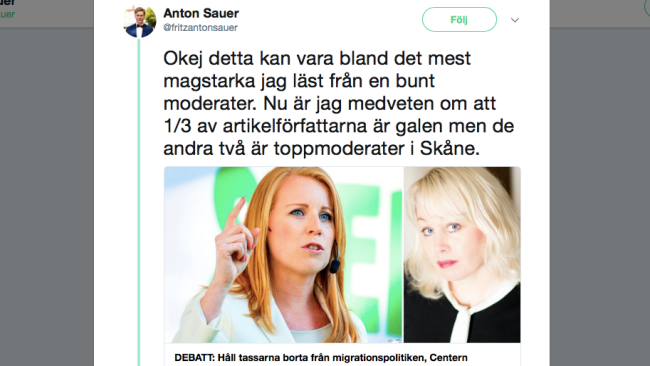 "Centerpartist kallar moderaten Ann Heberlein ""galen"" – Alliansen oenig om migrationspolitiken"