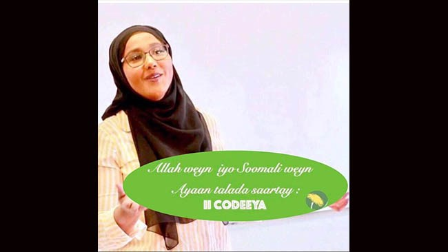 "Leila Ali Elmis etno-nationalistiska valkampanj: ""Ni har chansen att välja en somalisk representant"""
