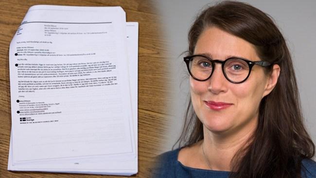 Ambassadören vågade inte skriva under värdegrundsuppropet på UD – av rädsla för SD och Expressen