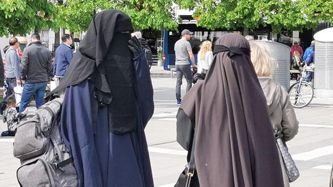 Ronie Berggren: Både USA och Europa har blundat för konflikten med den islamiska kulturen