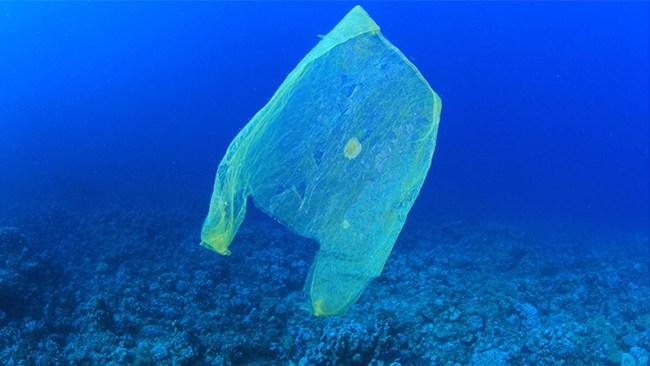 Prischock på plastpåsar när ny skatt införs