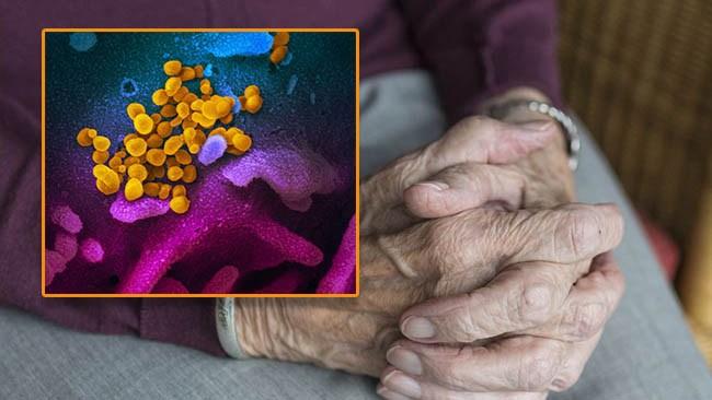 Ny rapport visar: Nordiska grannländerna redovisar också avlidna på äldreboenden