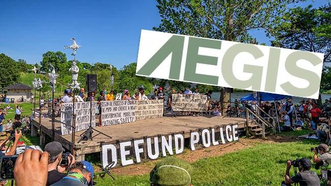 Politiker avskaffar polisen – får själva privat skydd för 42 000 kronor om dagen
