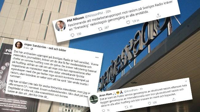 "Hård kritik mot rasupprop på Sveriges Radio: ""Helt sanslöst"""