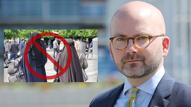 """Weimers (SD): """"Förhoppningsvis kan detta aktualisera debatten även i Sverige"""""""