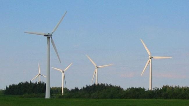 Kommuner säger nej – över 1 200 vindkraftverk stoppade